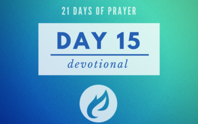 21 Days – Day 15