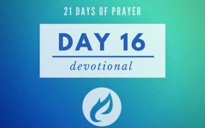 21 Days – Day 16