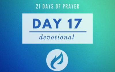 21 Days – Day 17